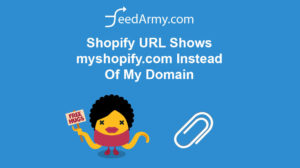 Shopify URL Shows myshopify.com Instead Of My Domain